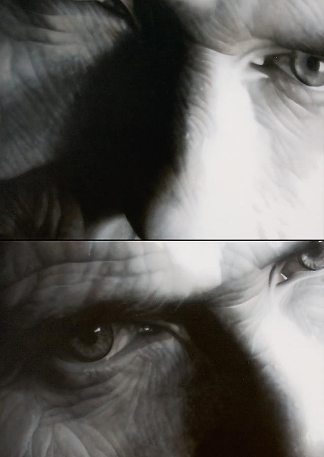 Malarstwo Teresy Miszkin